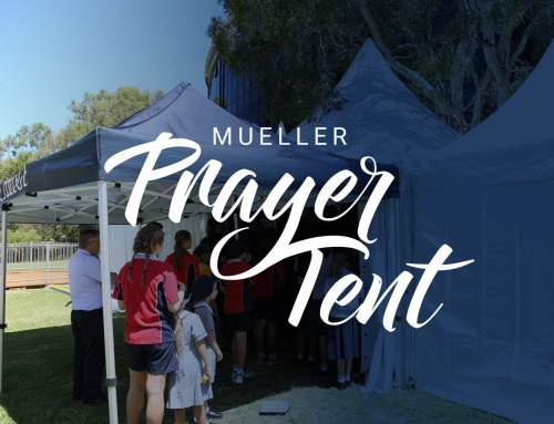 Mueller Prayer Tent is on this week!