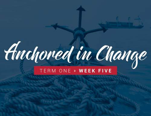 Anchored in Change