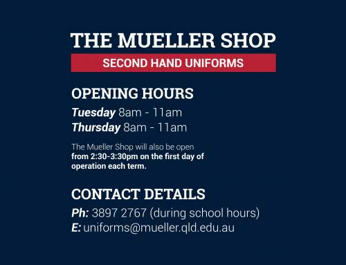 Mueller Shop Term 2 Hours