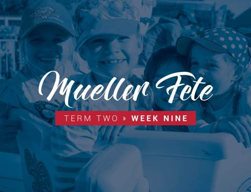 Contribute to Community at the Mueller Fete