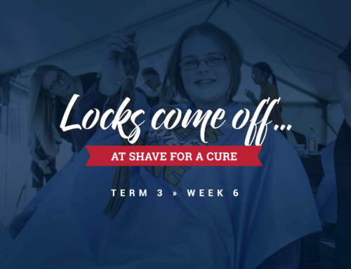 Locks Come Off at Shave for a Cure