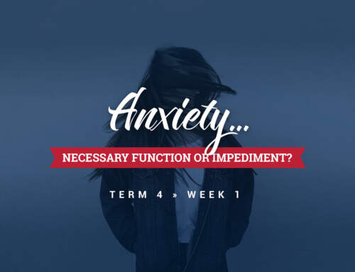 Anxiety – Necessary Function or Impediment?