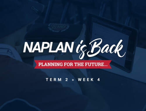 NAPLAN is back